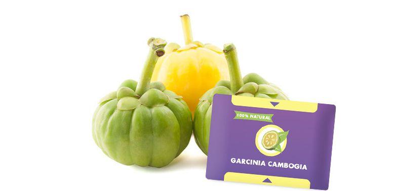 Гарцинии камбоджийской для похудения продукт