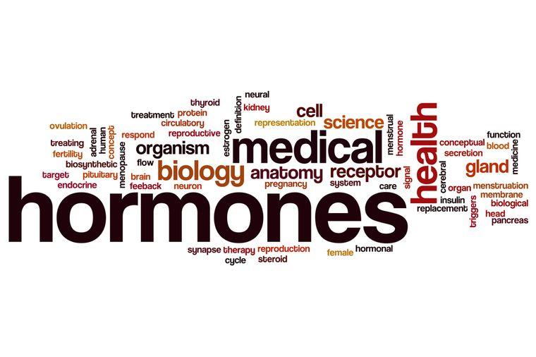 Какие гормоны влияют на наш вес. - Актуальная тема
