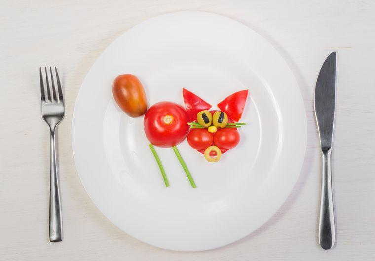 кот из помидоров