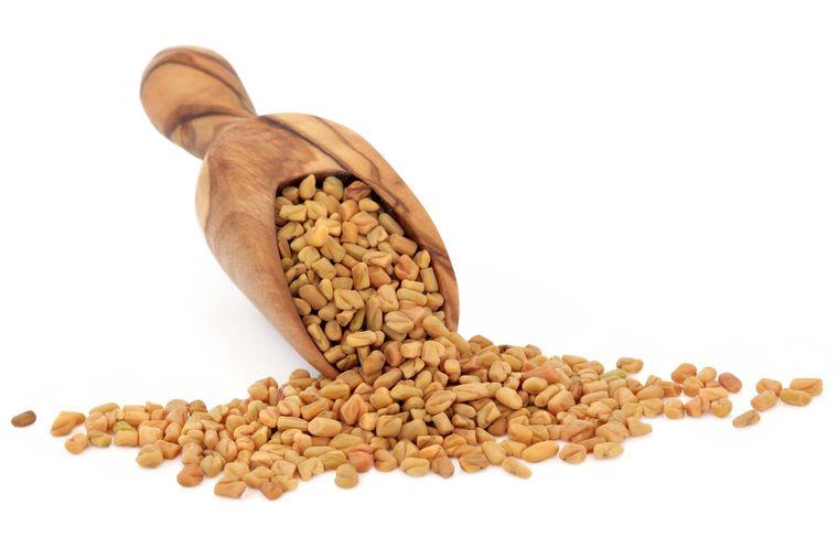 семена пажитника