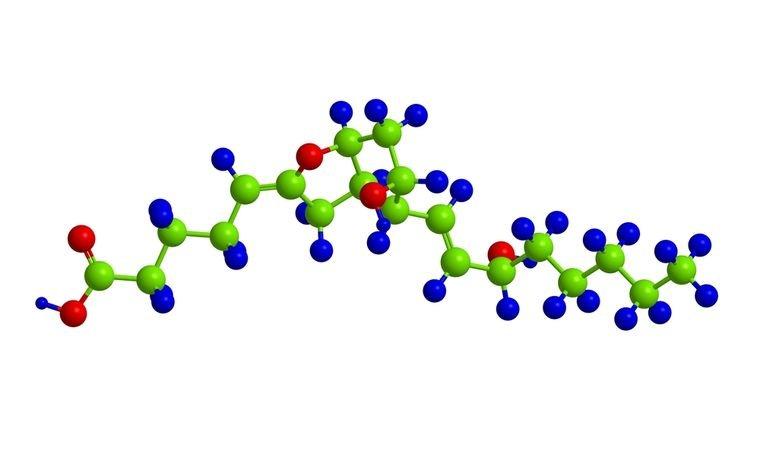 глюкагон