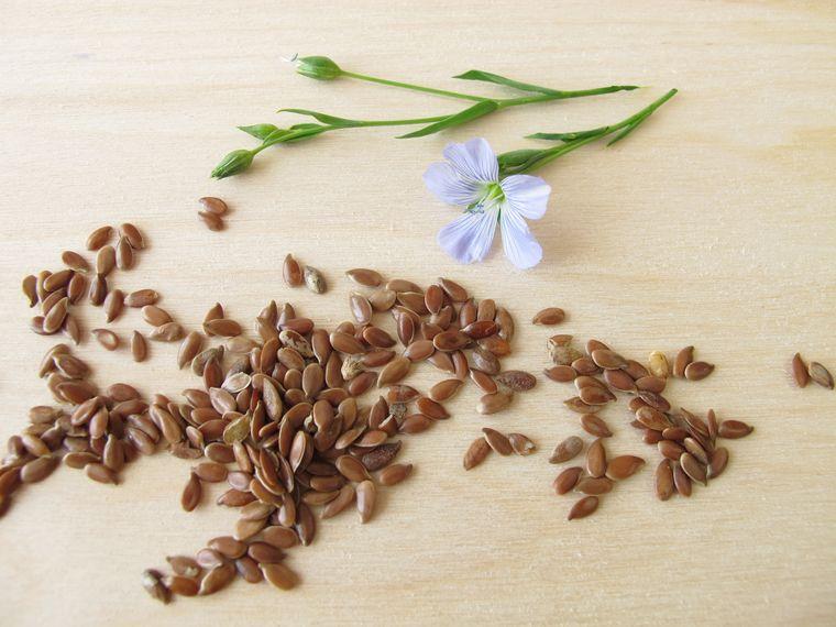 Сколько калорий в льняном семени