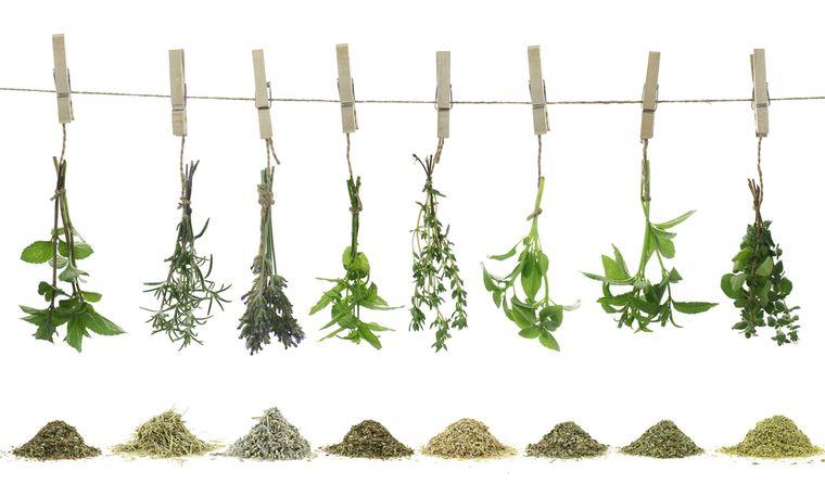 травяные растения капсула для похудения  Новости Бурятии